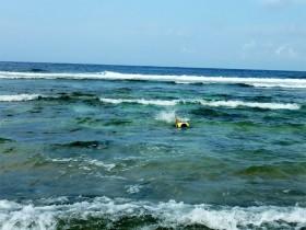 沖縄 与那国島 シュノーケラー ティコさん